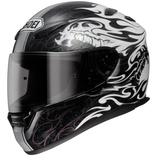 Shoei-XR-1100-Beowulf-TC-6